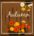 autumn flowers fall leaves banner greeting vector image vector image