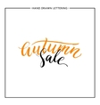 Autumn sale lettering vector image vector image