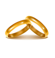 background with wedding rings vector image