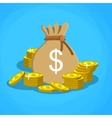 bag with dollars money vector image
