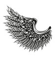 barley ears in wing shape concept vector image vector image
