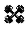 contour dumbbells instrument to do exercise in the vector image vector image