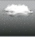 dark cloud and rain on transparent background vector image