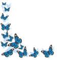 element design frame made butterflies blue vector image vector image