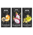 exotic fruits banners set realistic dragon vector image