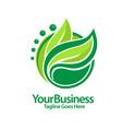 fgreen leaf logo vector image vector image