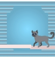 Greeting card with cat and ribbon vector image vector image