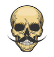 human skull sketch engraving vector image vector image