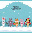 merry chrismtas card cartoon vector image vector image
