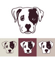 puppy dog head vector image vector image