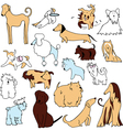 set of funny dogs vector image vector image