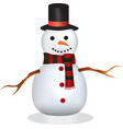 snowman with hat and scarf vector image vector image