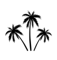 Three palms sketch vector image vector image