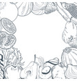 vegetables and fruits frame hand draw vector image