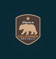 vintage california republic bear with sunbursts vector image vector image