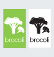 brocoli icon logo sign tamplat brocoli silhouette vector image