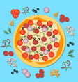 delicious pizza with salami cheese and tomato vector image