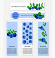 design of banners with fresh blueberry vector image