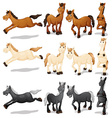 Horse set vector image vector image