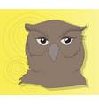 owl portrait color background vector image vector image