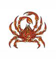 spider crab vector image
