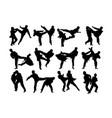 taekwondo sport silhouettes vector image