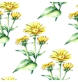 Watercolor elecampane herb seamless pattern vector image vector image