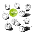Hand drawn Apples set vector image