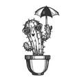 cartoon cactus plant sketch engraving vector image vector image