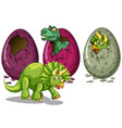 Eggs and many dinosaurs vector image