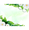 Green leaves and white flowers vector image vector image