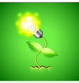 Plant-bulb grows from the ground background vector image vector image