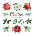 poinsettia flowers and christmas floral elements vector image vector image