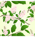seamless texture pink lilac branch natural vector image vector image