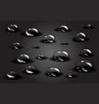 water dark drops vector image vector image