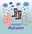 Autumn background with rubber boots vector image