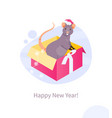 christmas rat in a box vector image vector image