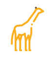 giraffe icon outline vector image