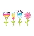Home flower in pot vector image vector image