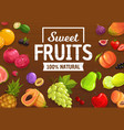 berries and fruits farm market harvest vector image vector image
