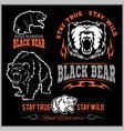 black bear for logo sport team emblem design vector image vector image
