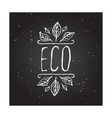 Eco product label on chalkboard vector image vector image