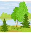 landscape forest river vector image
