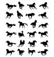 silhouettes galloping horses vector image vector image