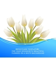 White tulip spring bouquet for sale vector image