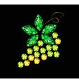 Gem Grape With Leaf vector image
