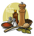 spices vector image vector image