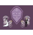 bride and groom on a white tricycle vector image