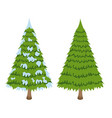 merry christmas tree sign on white background vector image vector image