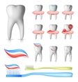 dental set vector image